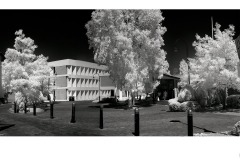 Monash Town Hall - Ian Bock (Commended - Set Subject - Oct 2019 PDI)